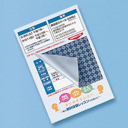 サンワサプライ JP-HKSEC11 貼り直しができる目隠しシール(2面付)
