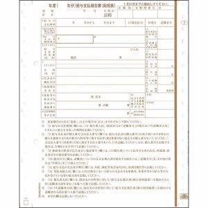 日本法令 チホウMC-6-28 地方MC-6 給与支払報告書(総括表) 2枚複写 平成30年提出用(29年分)