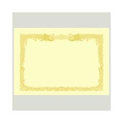 タカ印 10-1177 B4 賞状用紙 クリーム 縦書き用 100枚入り