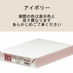 APP カラーPPC用紙 B5 アイボリー