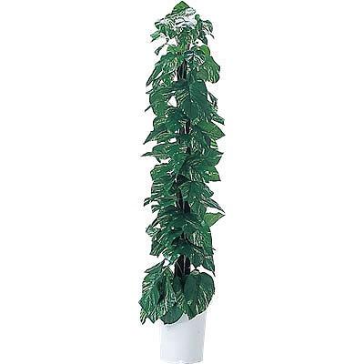 人工樹木 ポトス 高さ1800mm 天然ヘゴ支柱付