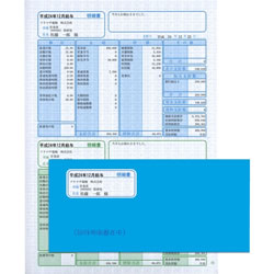 ソリマチ SR281 給与・賞与明細(明細タテ型)・封筒割引セット
